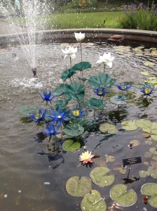 Water Garden~ glass lotus, koi, and water lilies.
