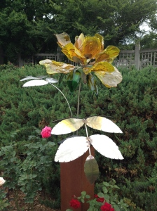 Rose Blossom~