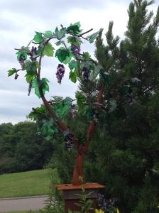 Grape Arbor~