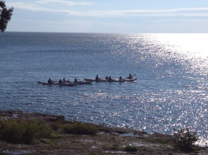 A group of kayaker's passed by.