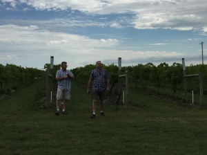 Tom & Kevin stroll out to the vineyard.