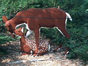 This was part of the largest display called...Deer Family.